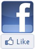 Facebook logos small